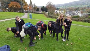 Students planting crocus bulbs